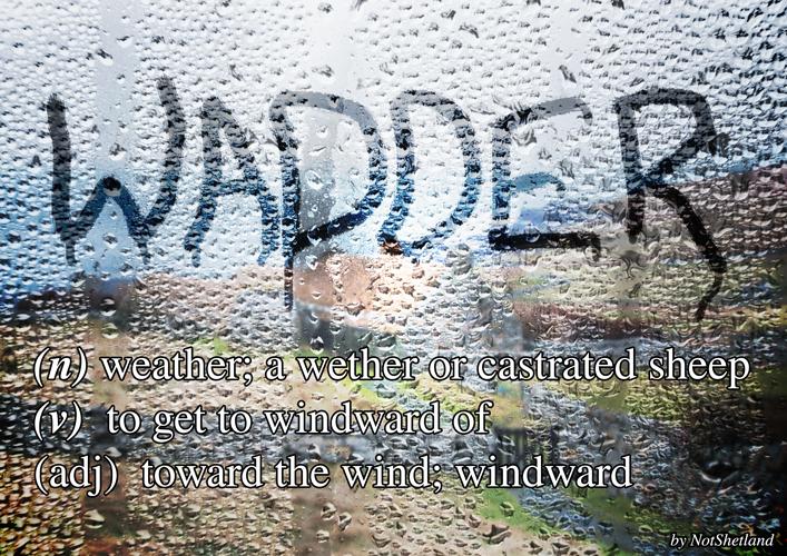 wadder707x500